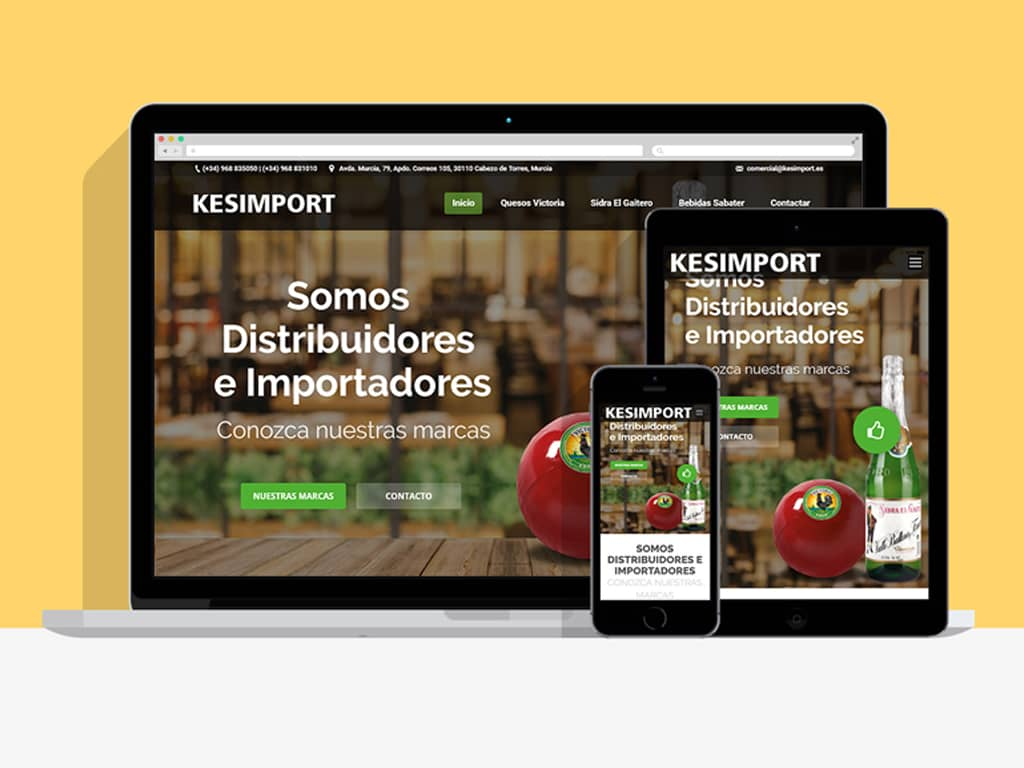 Diseño página web Kesimport - Cabezo de Torres (Murcia) - Brande Comunicación 01