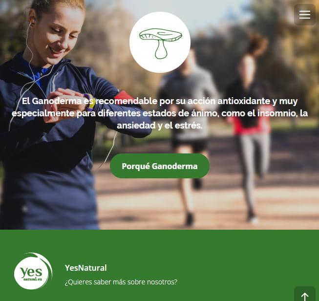 yes-natural-web-comercio1-min - Brande Comunicación 01